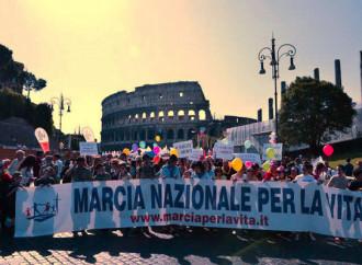 Marcia per la vita, Gigli vs Bussola