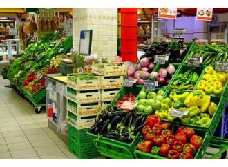 L'ecologismo di Coldiretti che uccide l'agricoltura