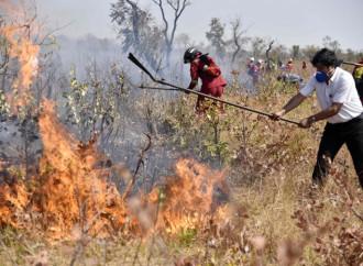Morales, cuando el ecocidio es políticamente correcto