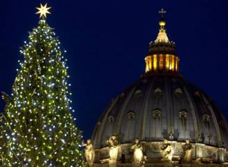 L'albero di Natale è cattolico, non può annacquare la fede