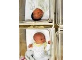Scambio di embrioni, tutto secondo logica