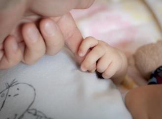Bonus bebè di Agenzia Nova: contributo privato, pubblica utilità