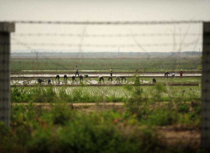 Corea del Nord, prima patria della moderna schiavitù