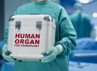 Il silenzio-assenso sugli organi? Una cattiva notizia