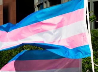 """150 organizzazioni arcobaleno contro la """"transfobia"""""""
