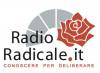Radio Radicale? No, non è servizio pubblico