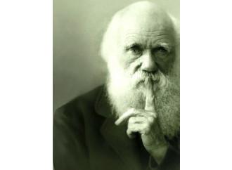 Uno  storione pallido sbugiarda  Darwin (e l'evoluzione)