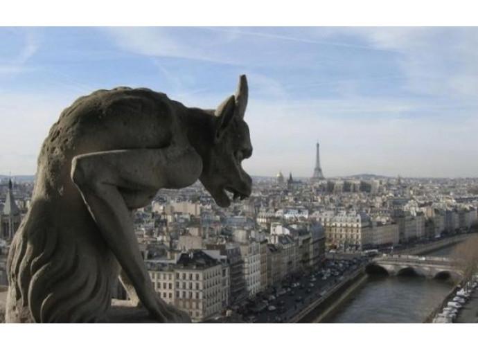 Statua demoniaca della cattedrale di Nôtre Dame di Parigi
