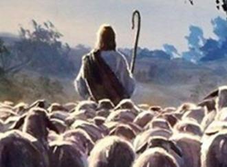 """Se i pastori """"escono"""" senza Gesù diventano pecore"""