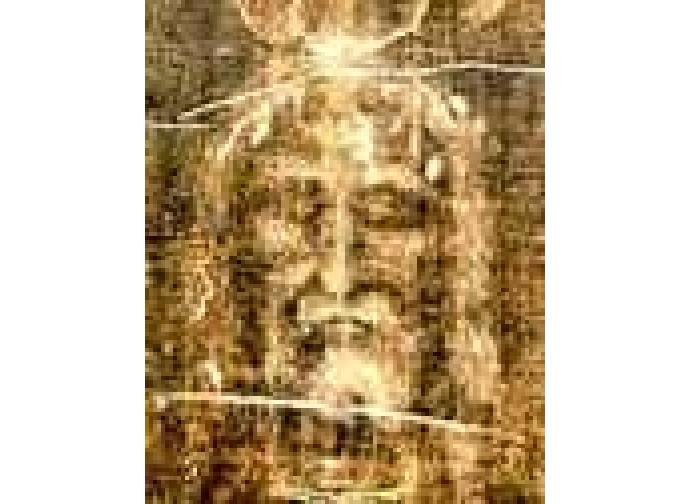 Il volto della Sacra Sindone