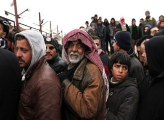 Decine di immigrati illegali sono stati portati dall'Algeria al confine con il Niger perché ritenuti soggetti pericolosi