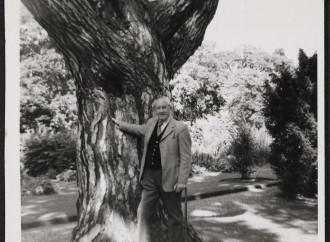 E Tolkien pregava, in elfico, per invocare protezione