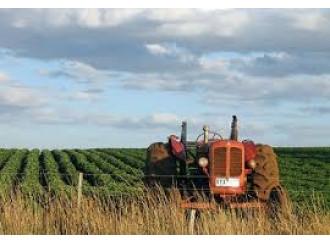 Ci salverà (forse) l'agricoltura