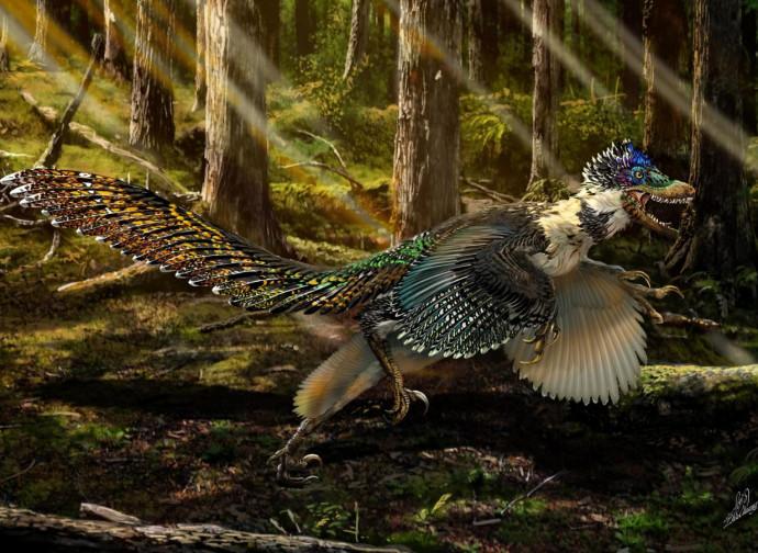 Uccellosauro