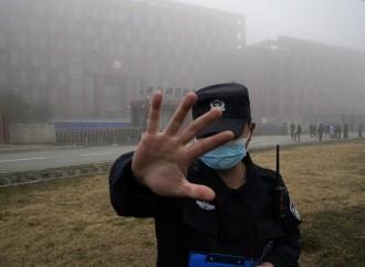 Fauci, il virus e il laboratorio di Wuhan: vietato sospettare